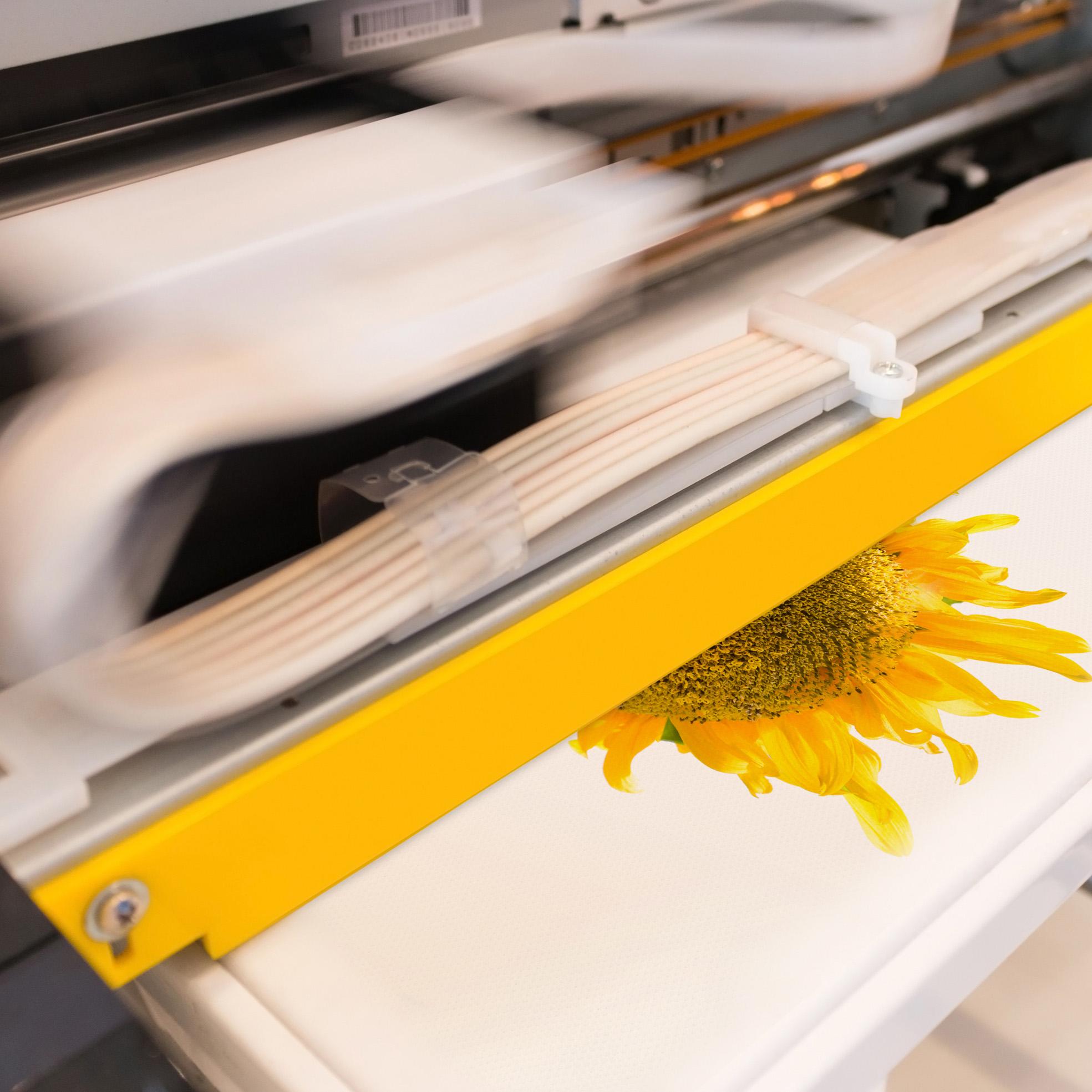 Impressão Digital x4